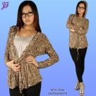 N019-Brown_small_leopard
